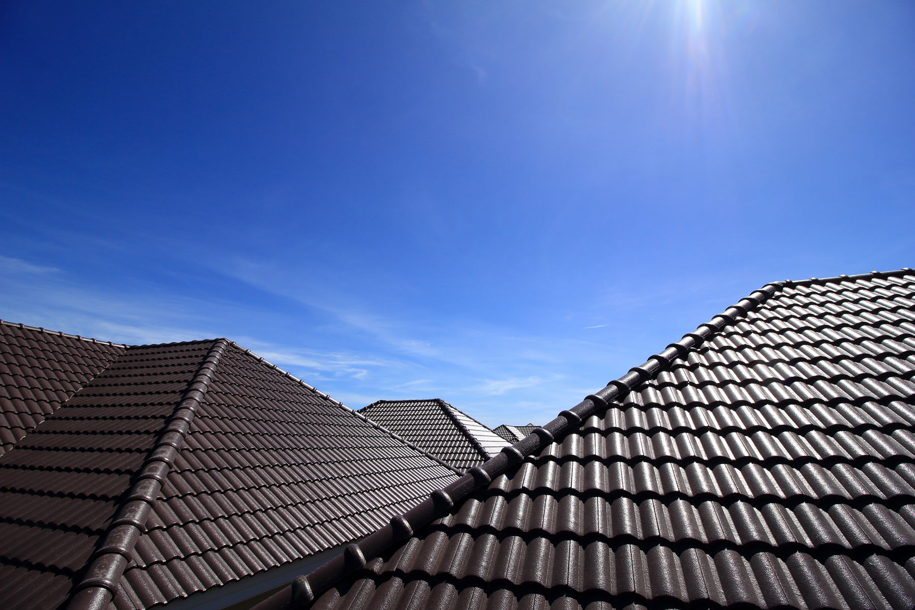 Black tile roofs_IMG